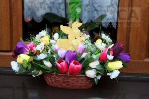 2016_03_19-DSC_4525