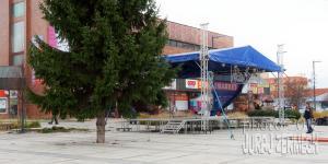 2011 11 28 DSC 5620