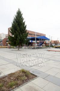 2011 11 28 DSC 5621